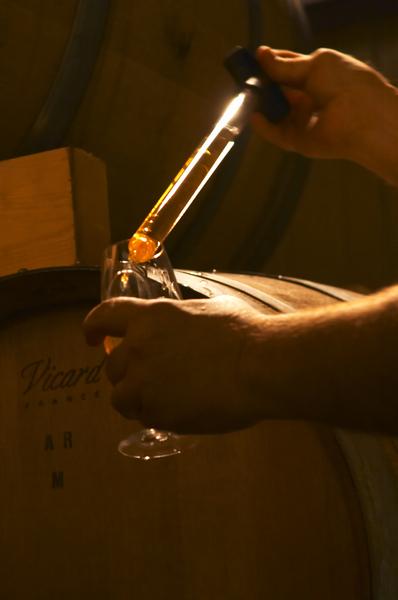 Taking a barrel sample for tasting