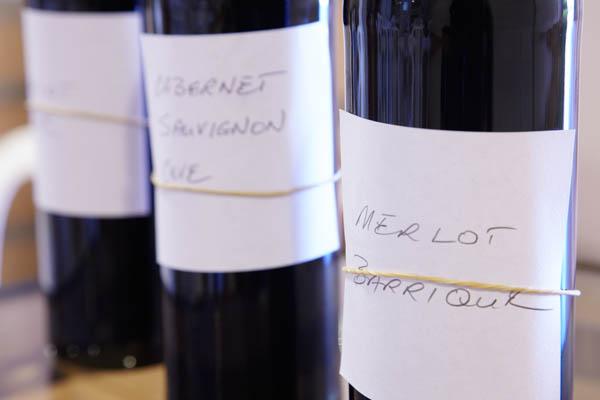 Base wines for blending, merlot, cabernet, oak barrel